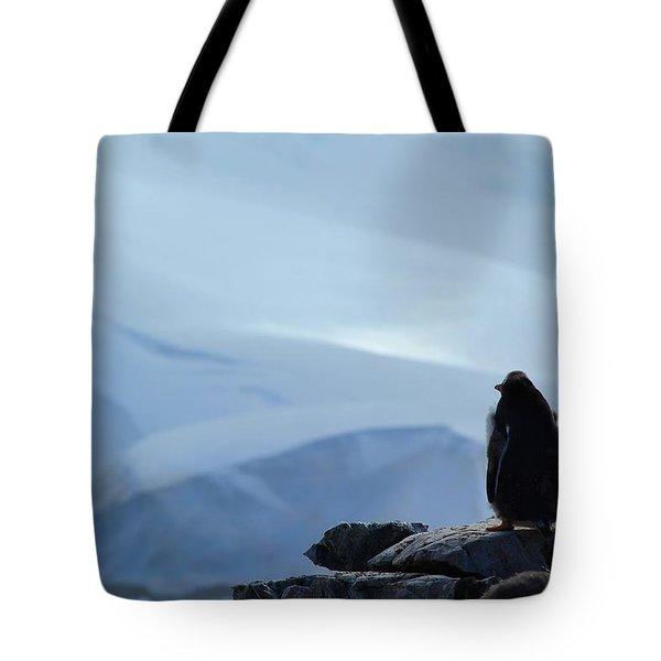 Moulting Gentoo Tote Bag