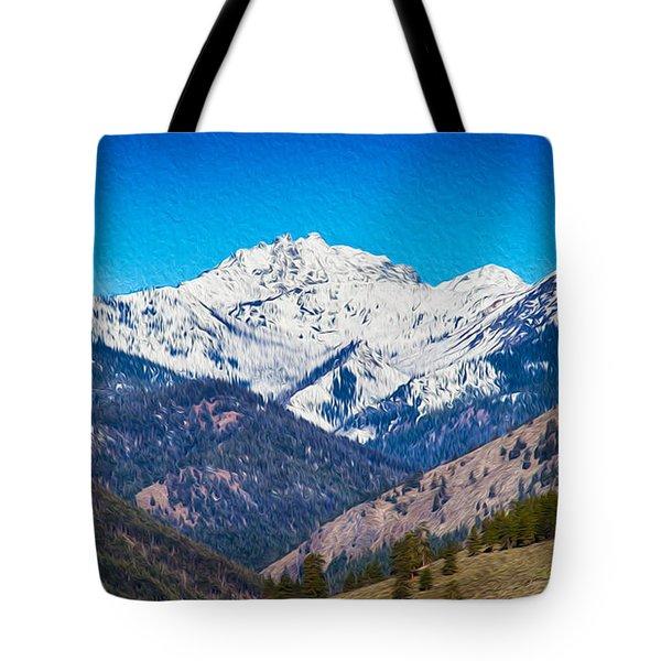Mount Gardner Close Up Tote Bag by Omaste Witkowski