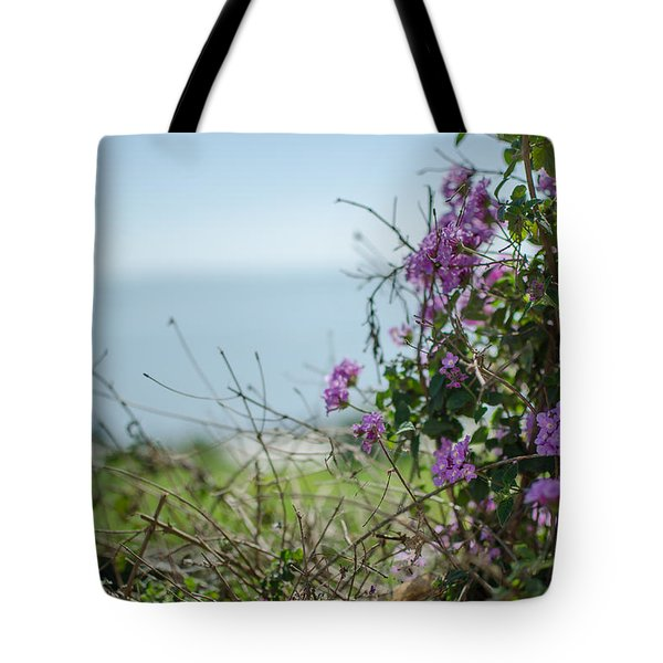 Mount Of Beatitudes Tote Bag