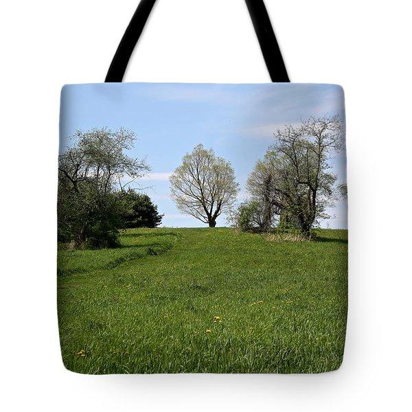 Mount Pollux Tote Bag by Randi Shenkman
