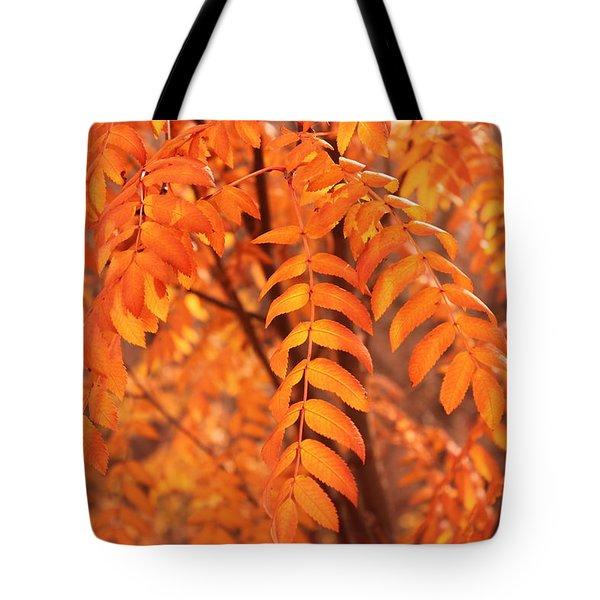 Mountain Ash Leaves - Autumn Tote Bag by Jim Sauchyn