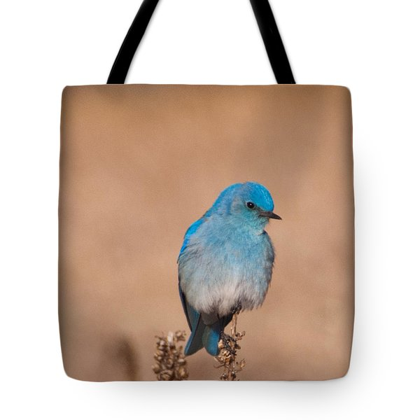 Mountain Bluebird Tote Bag