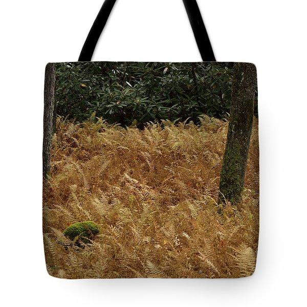 Mountain Carpet Tote Bag by Randy Bodkins