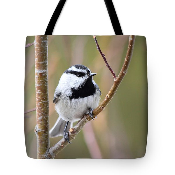 Mountain Chickadee Tote Bag