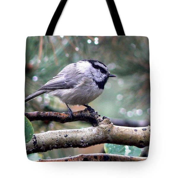 Mountain Chickadee On A Rainy Day Tote Bag