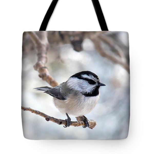 Mountain Chickadee On Branch Tote Bag