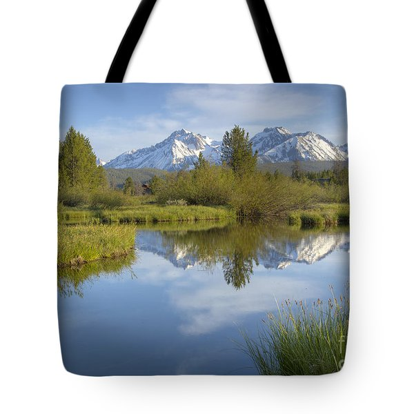 Mountain Daydream Tote Bag by Idaho Scenic Images Linda Lantzy