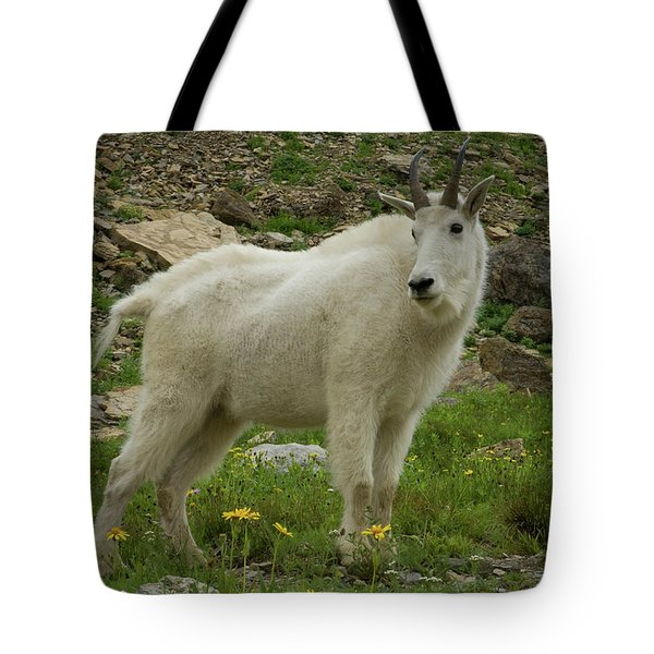 Mountain Goat At Logan Pass Tote Bag