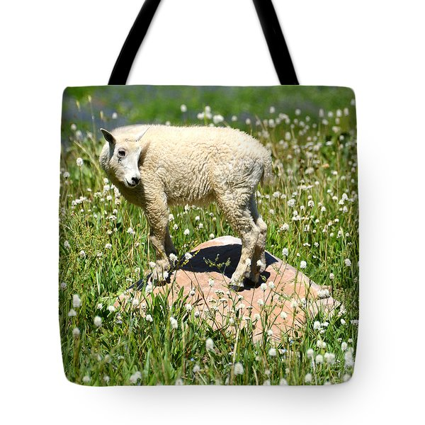 Mountain Goat Kid Among Wildflowers Tote Bag