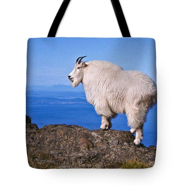 Mountain Goat On Klahane Ridge Tote Bag by Jeff Goulden