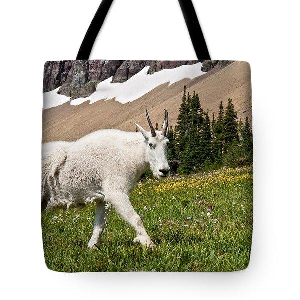 Mountain Goat Walking Beneath A Talus Slope Tote Bag