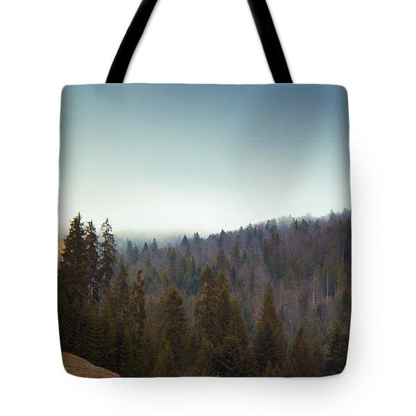 Mountain Landscape In Romania Tote Bag