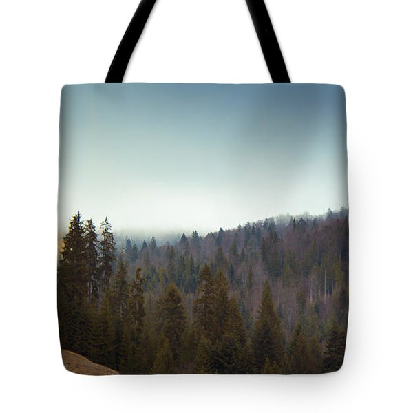 Mountain Landscape In Romania Tote Bag by Vlad Baciu