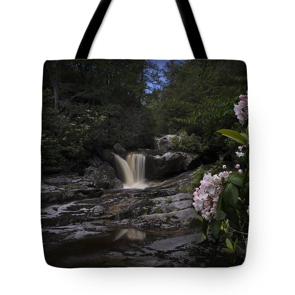 Mountain Laurel And Falls On Small Stream Tote Bag by Dan Friend