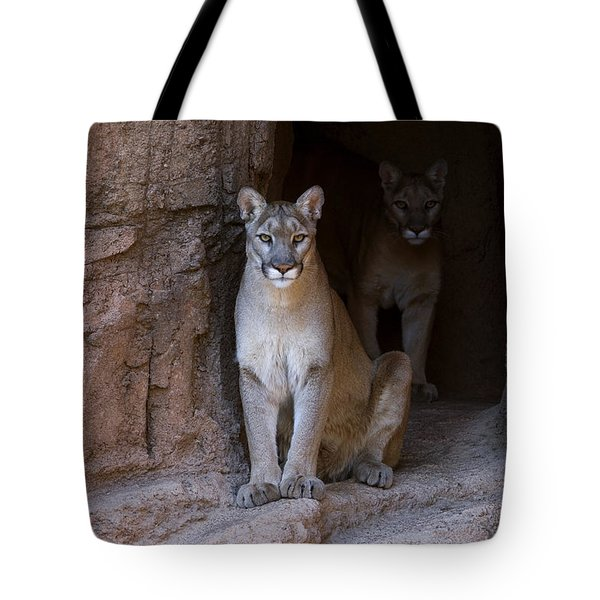 Tote Bag featuring the photograph Mountain Lion 1 by Arterra Picture Library