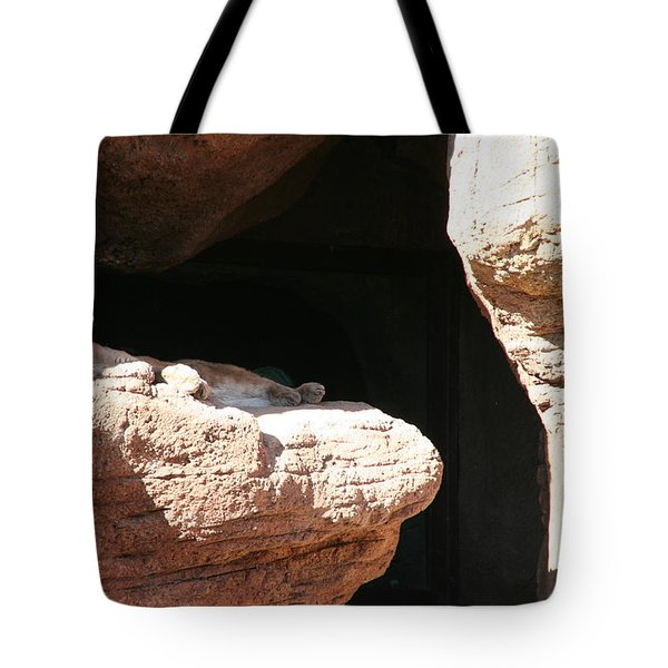 Tote Bag featuring the photograph Mountain Lion by David S Reynolds