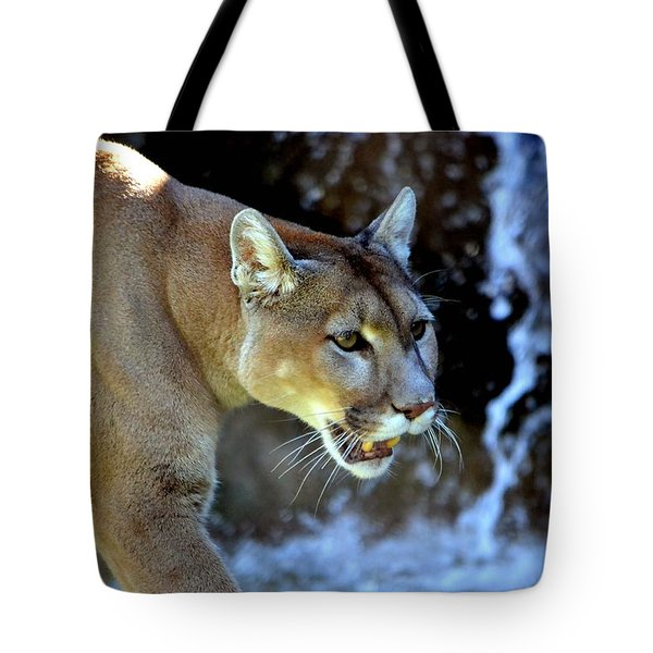 Mountain Lion Tote Bag by Deena Stoddard