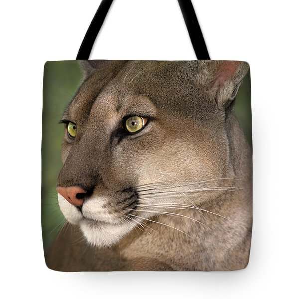 Mountain Lion Portrait Wildlife Rescue Tote Bag by Dave Welling