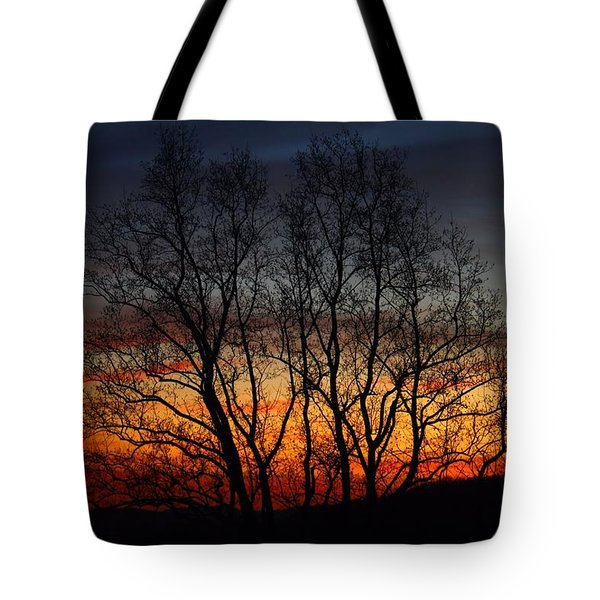 Tote Bag featuring the photograph Mountain Sunset by Kathryn Meyer