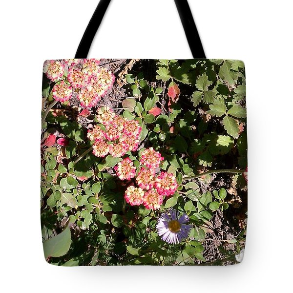 Tote Bag featuring the photograph Mountain Wildflowers by Fortunate Findings Shirley Dickerson