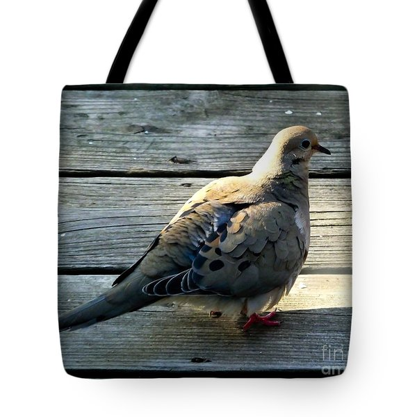 Tote Bag featuring the photograph Mourning Dove by Kristen Fox