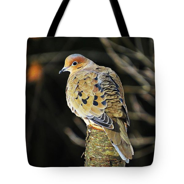Mourning Dove On Post Tote Bag by MTBobbins Photography