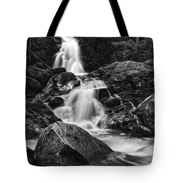 Mouse Creek Falls Tote Bag