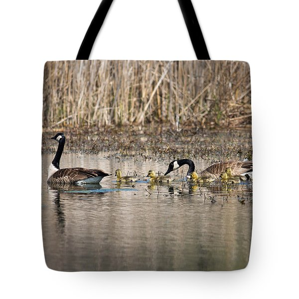 Moving Along Tote Bag by Dale Kincaid