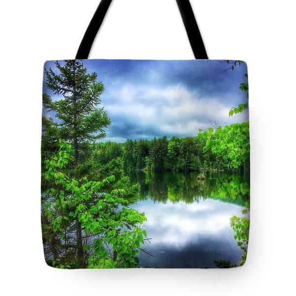 Moxie Pond Tote Bag