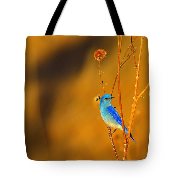 Tote Bag featuring the photograph Mr. Blue by Kadek Susanto