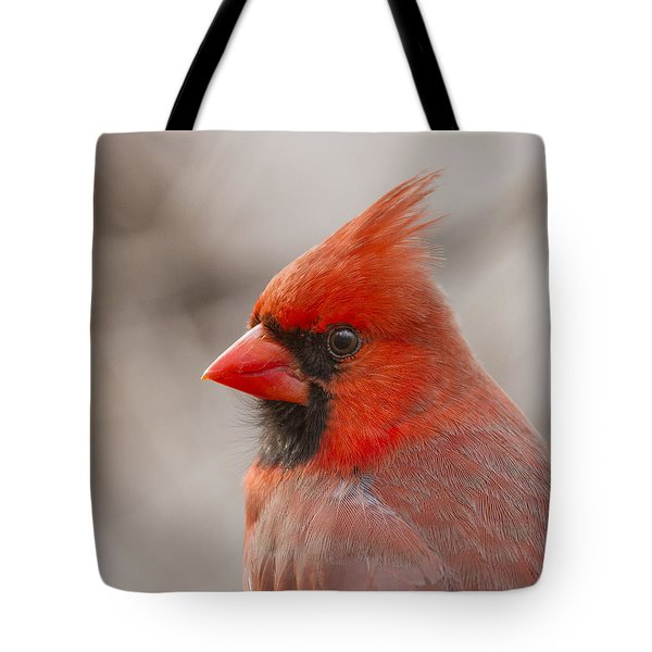 Mr Cardinal Portrait Tote Bag by Mircea Costina Photography
