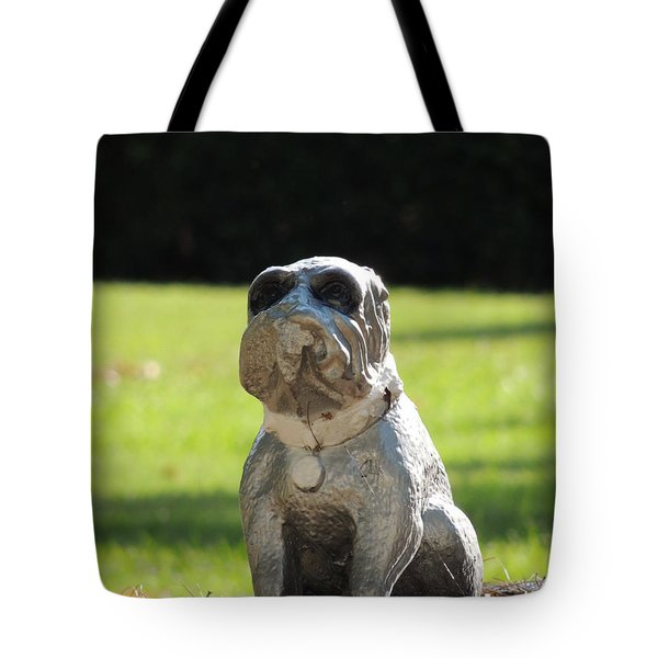 Tote Bag featuring the photograph Mr Cool by Aaron Martens