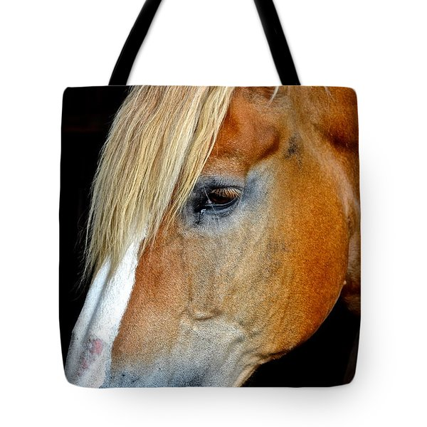 Mr Ed Tote Bag by Frozen in Time Fine Art Photography