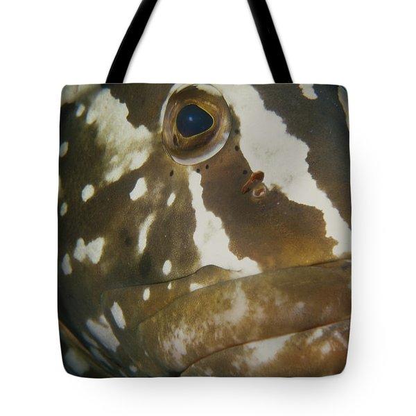 Mr. Grouper Tote Bag