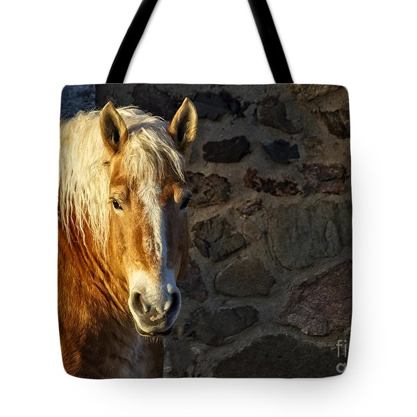 Mr. Handsome Tote Bag