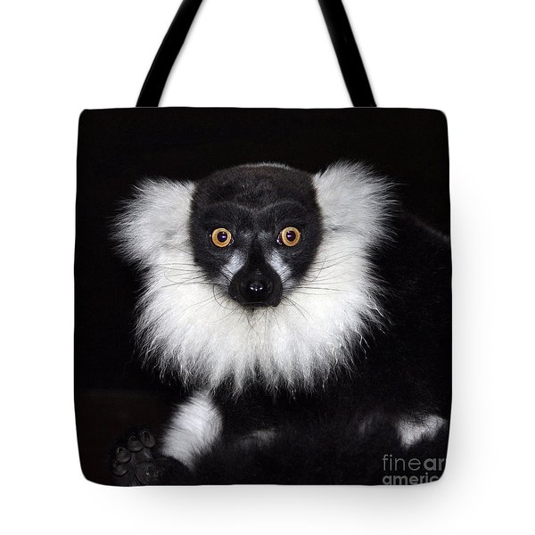 Tote Bag featuring the photograph Mr Lemur by Terri Waters