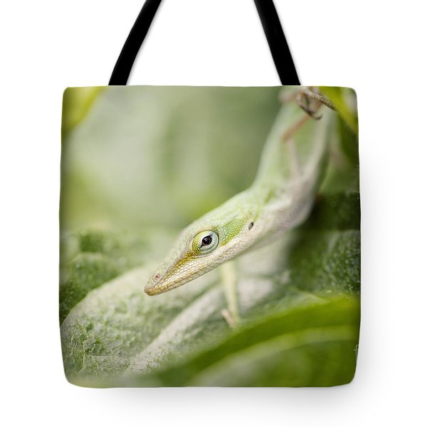 Mr Lizard Tote Bag by Erin Johnson