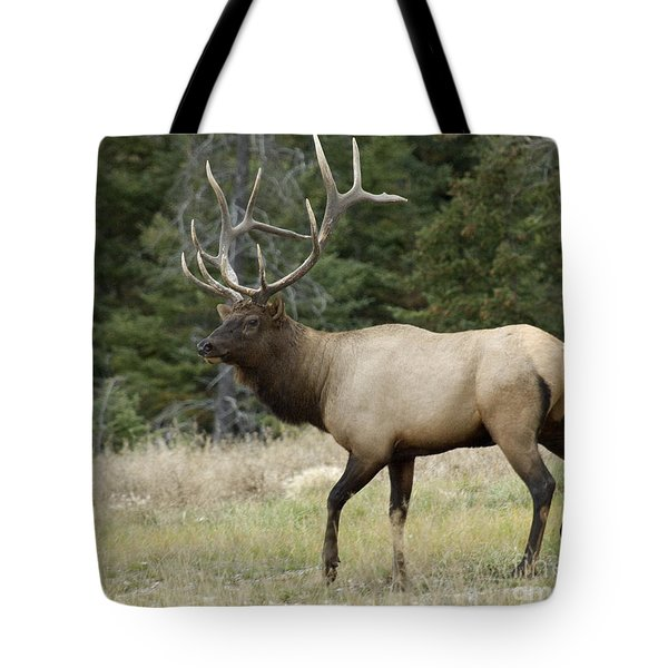 Mr Majestic Tote Bag by Bob Christopher