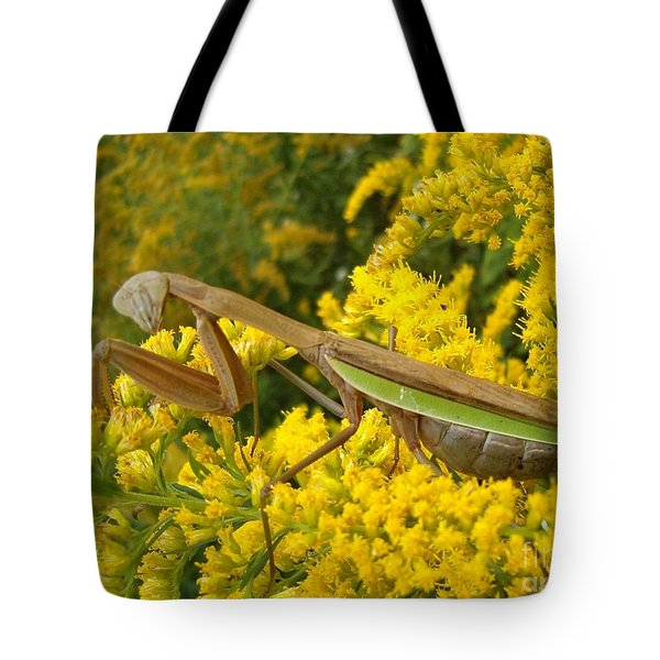 Tote Bag featuring the photograph Mr. Mantis by Sara  Raber