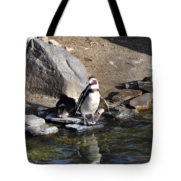 Mr Popper's Penguins Tote Bag by Bill Cannon