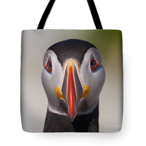 Mr. Puffin.. Tote Bag