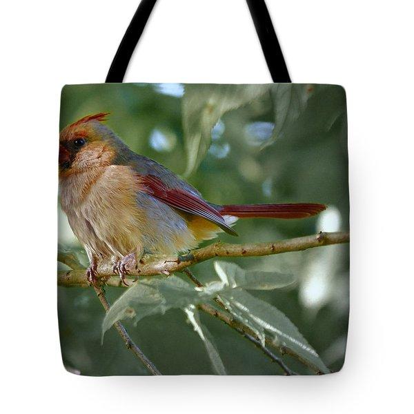 Mrs. Cardinal Tote Bag