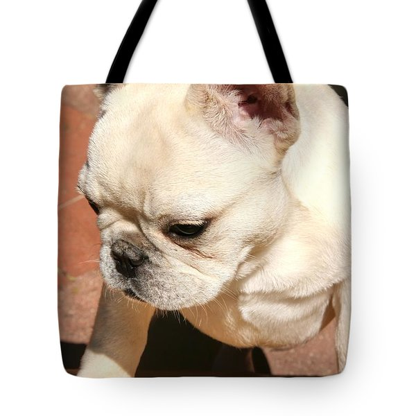 French Bulldog Ms Quiggly  Tote Bag