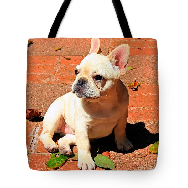 Ms. Quiggly Tote Bag