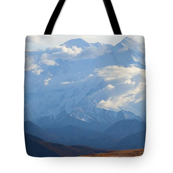 Tote Bag featuring the photograph Mt. Denali by Ann Lauwers