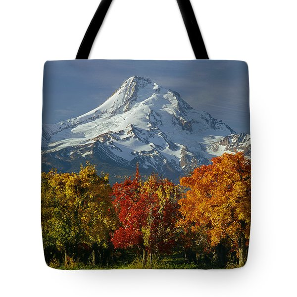 1m5117-mt. Hood In Autumn Tote Bag