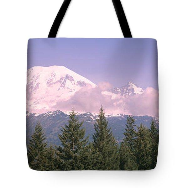 Mt Ranier Mt Ranier National Park Wa Tote Bag