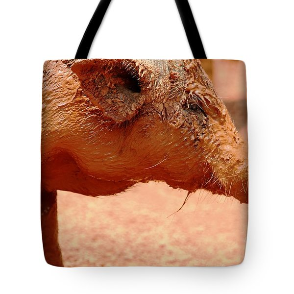 Tote Bag featuring the photograph Mud Bath And A Facial by Nola Lee Kelsey