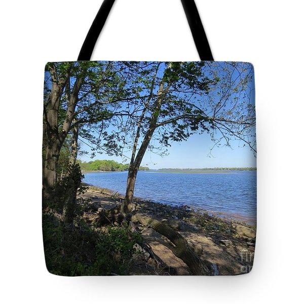 Mud Island Tote Bag