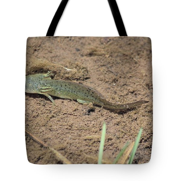 Mud Puppy Tote Bag